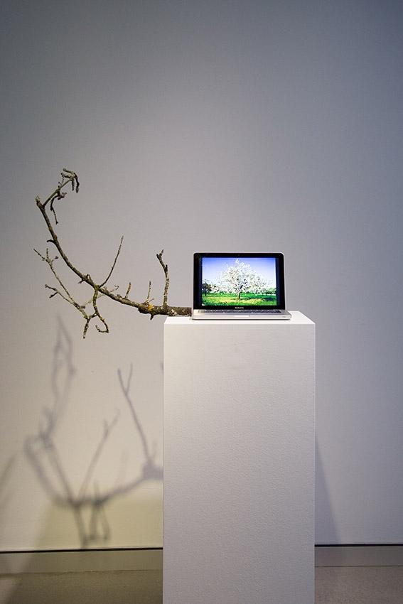 Ausstellungsansicht HeK, 2016