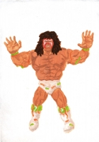 http://www.jsbaumann.ch/files/gimgs/th-11_11_3ultimatewarrior.jpg